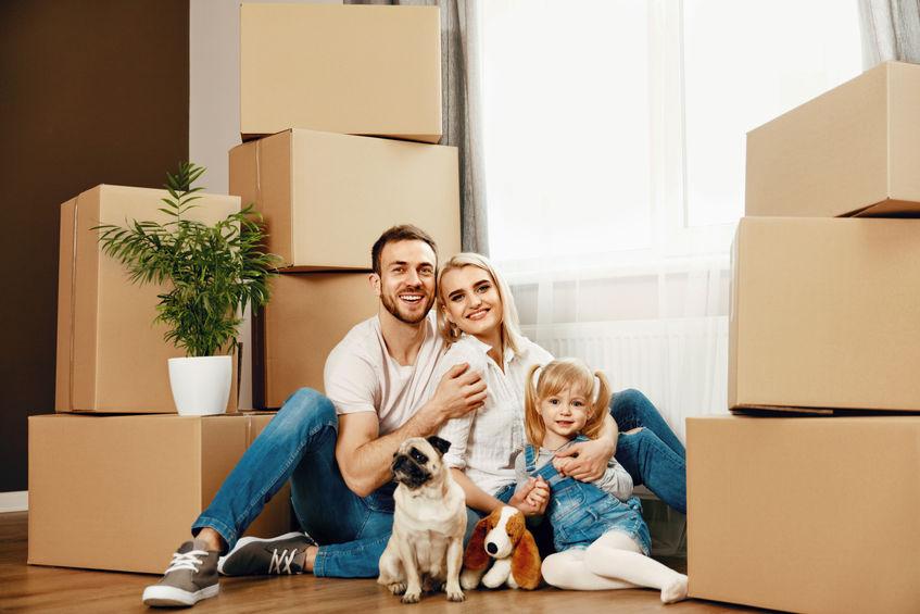 gérer le déménagement avec un animal